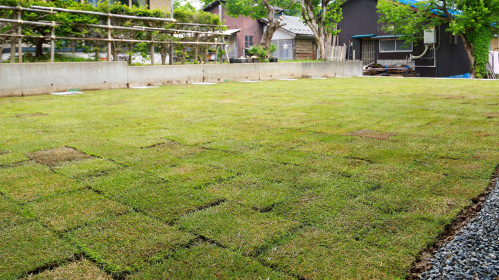 安全な芝生の広い庭
